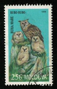 Bird (ТS-2258)
