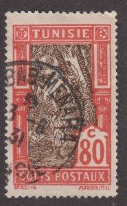 Tunisia Q19 Gathering Date Fruit 1926