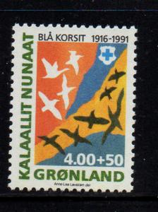 Greenland Sc B15 1991 Blue Cross charity stamp mint NH