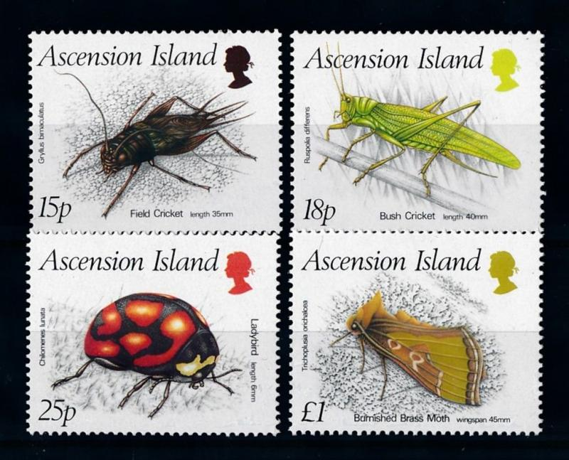 [70658] Ascension 1988 Insects Cricket Ladybird  MNH