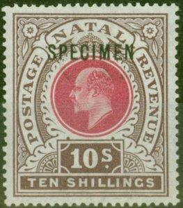 Natal 1902 10s Dp Rose & Chocolate Specimen SG141s V.F Lightly Mtd Mint
