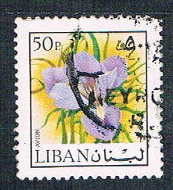 Lebanon C663 Used Iris (BP1922)