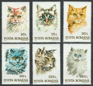 1993 Romania 4885-4890 Cats
