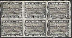 Newfoundland #193 Used Block of 6 cv $5.10