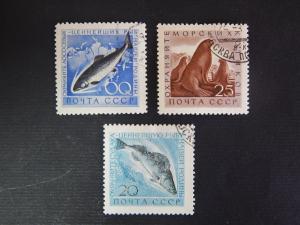 Fish, series, SU, №98(IR)