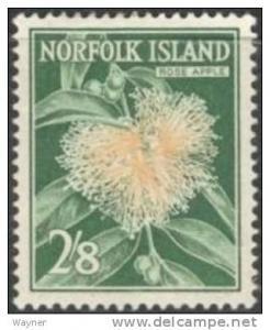 Norfolk Isl. 1962 Rose Apple Scott 39 mint light hinged.