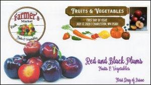 20-165, 2020, SC 5484, Fruits & Vegetables, FDC, Digital Color Postmark,