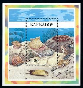 [99636] Barbados 1997 Marine Life Sea shells Souvenir Sheet MNH