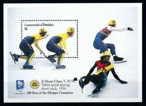 [101513] Dominica 1994 Olympic winter games Lillehammer short track Sheet MNH