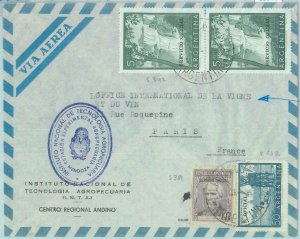 85975 - ARGENTINA - Postal History  OFFICIAL STAMPS on COVER to FRANCE 1962 wine