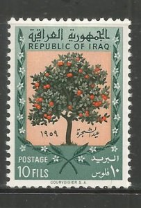 IRAQ  231  HINGED,  ORANGE TREE
