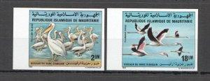 W1184 IMPERFORATE 1981 MAURITANIA BIRDS PELICANS FLAMINGOS #738-9 RARE SET MNH