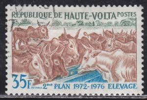 Burkina Faso 278 Domesticated Cattle 1972