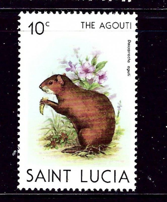 St Lucia 538 MNH 1981 The Agouti
