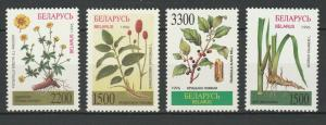 Belarus 1996 Flora Flowers Plants 4 MNH stamps