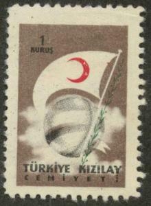 Turkey RA208 Mint F-VF sm th, lt cr