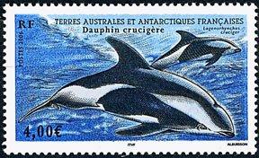Scott #369 Dolphins MNH