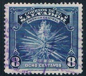 El Salvador Plant 8 - wysiwyg (EP5R204)