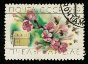 Honeybee (TS-2122)