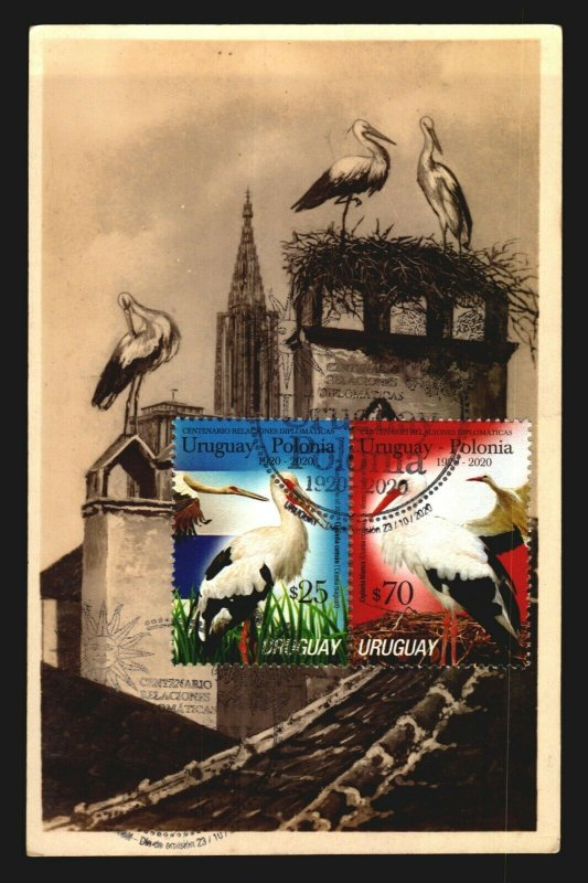 Uruguay Poland Bird stork typical costumes embroiders flags MAXI Card Maximum