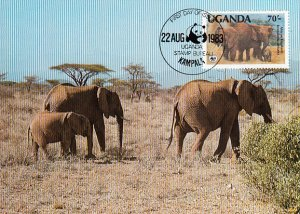 Uganda 1983 Maxicard Sc #374 70sh African elephant WWF