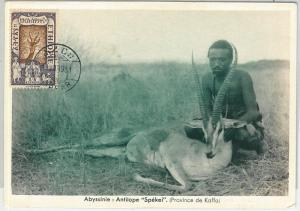 59109  -  ETHIOPIA - POSTAL HISTORY: MAXIMUM CARD 1931  -  ANIMALS Hunting