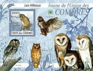 Comoros - Owls -  Stamp S/S  - 3E-174
