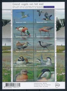 [41522] Netherlands 2016 Birds Vögel Oiseaux Stern Ducks MNH Miniature Sheet