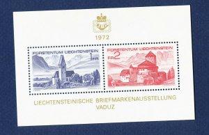 LIECHTENSTEIN - # 505 - VFMNH S/S - 8th Philatelic Exhibition -Castles - 1972