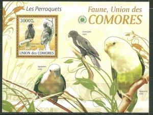 Comoro Island MNH S/S Parrots 2009