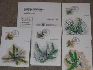 Liechtenstein Maximum Card FDC`s, Special Stamps of Ferns 1992