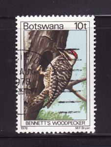 Botswana 204 U Bennett's Woodpecker, Bird (B)