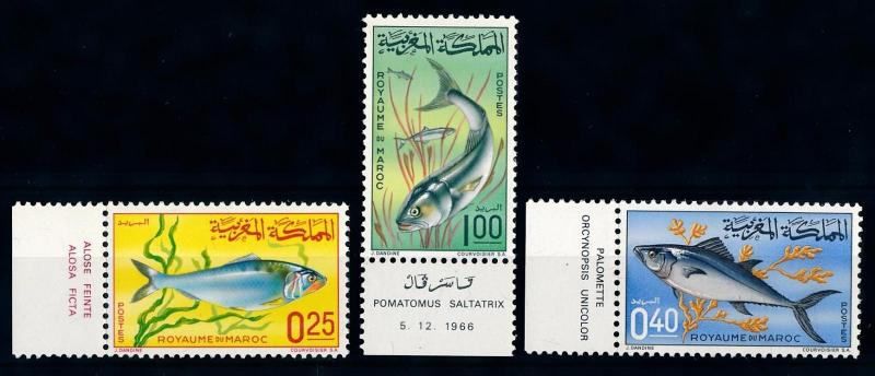 [66006] Morocco 1967 Marine Life Fish with Labels MLH