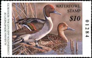 ALABAMA #42 2020 STATE DUCK STAMP PINTAILS by Jon Denney