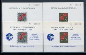 Salvador Plants Flowers small accumulation of MNH stamps x28515