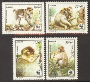 Algeria Sc# 872-5 MNH WWF / Barbary Apes