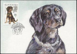 Slovakia. 2007. Dogs: Slovensky Kopov (Mint) Maximum Card