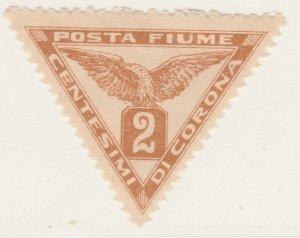 Fiume Newspaper 1919 2c Very Fine MNH** Stamp A21P11F4984