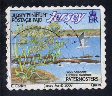 Jersey #1092d Paternosters Reef, used (1.10)