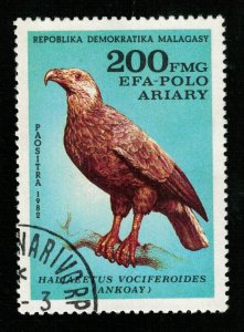 Bird (TS-2092)