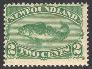 NEWFOUNDLAND SCOTT 47