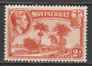 MONTSERRAT 1938 KGVI BOTANIC STATION 2D PERF 13
