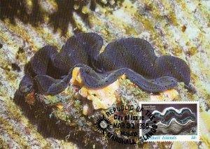 Marshall Islands 1986 Maxicard Sc #111 14c Giant clam WWF