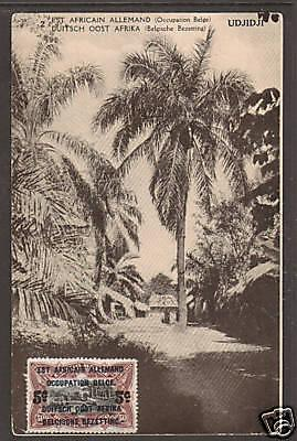 German East Africa Sc N25 on 1922 PPC, Oil Palms