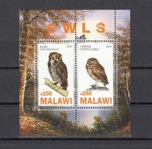 Malawi, 2010 Cinderella issue. Owls, Birds sheet of 2.
