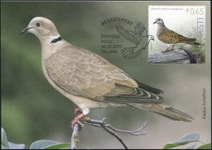 Estonia. 2017. European Turtle Dove (Streptopelia turtur) (Mint) Maximum Card