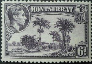 Montserrat 1938 GVI Six Pence SG 107 mint