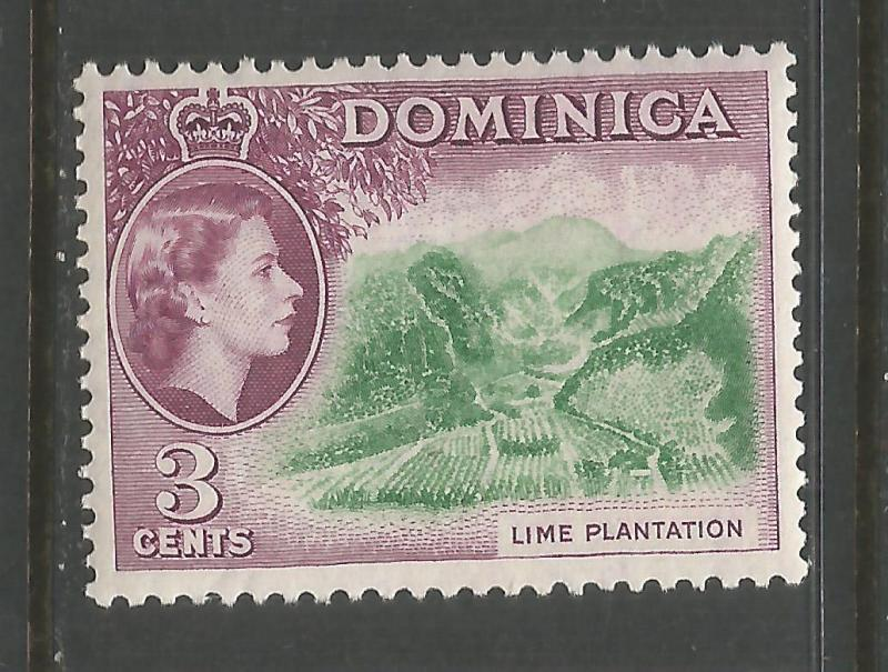 DOMINICA 145 MNH LIME V902-8
