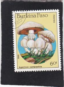 Burkina Faso #746 used