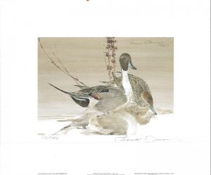WASHINGTON #5 1990 STATE DUCK STAMP PRINT PINTAILS by Thomas Quinn 2 stamps